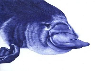 Художник Хуан Франциско Касас - картины шариковой ручкой