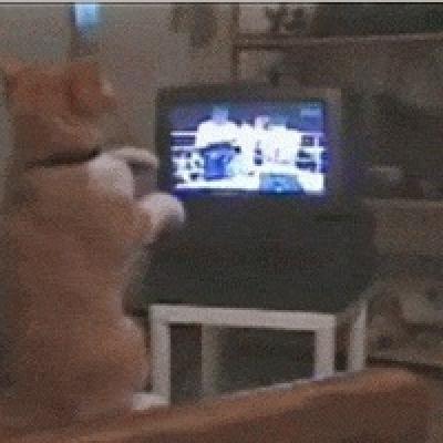 Телевизионный бокс
